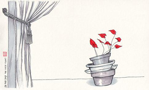 022809-plant