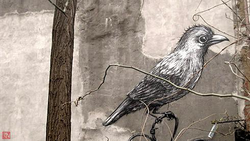 birdgraff eastvillage