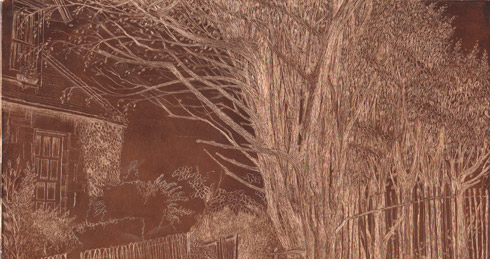 lines etching in progress- copper plate