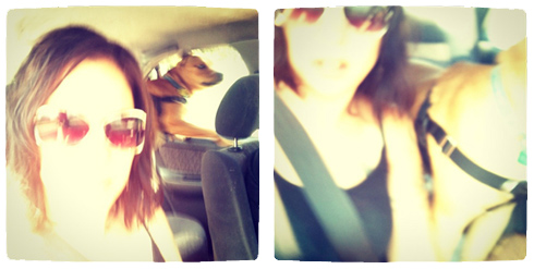 me and Luna the dog, blurry, in the car
