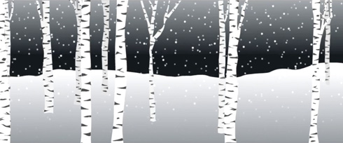 birch trees in snow; link to animation