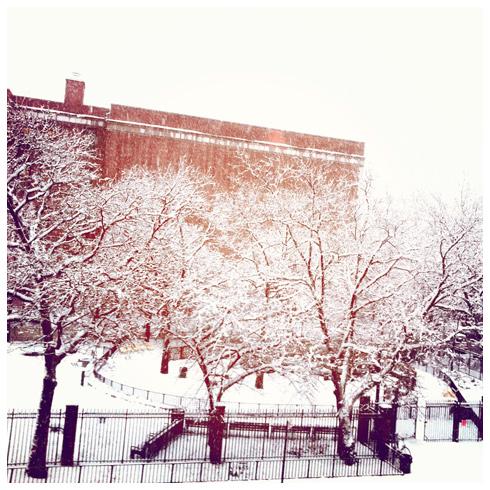 Brooklyn snow Feb 2014