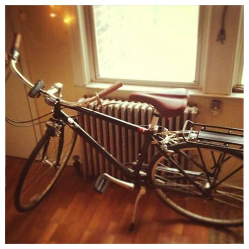 Globe Daily 1 bike
