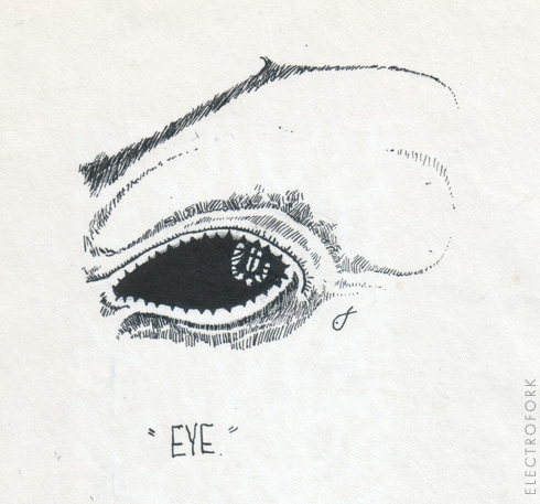 old ink drawing- eye