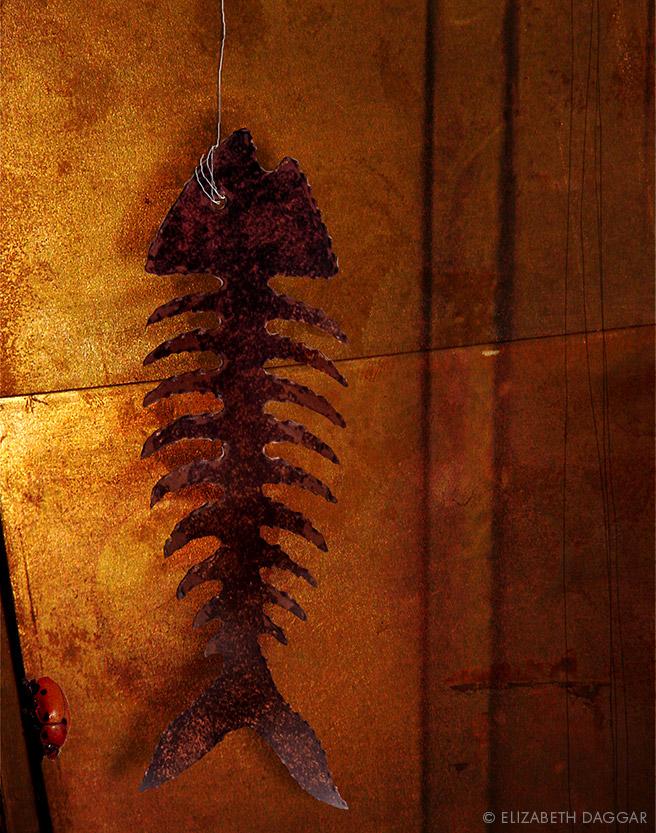 Photo collage:  Fish bones