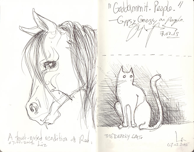 sketches: horse and cat