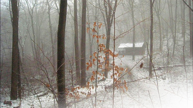 Cabin in snow, NJ, 2008