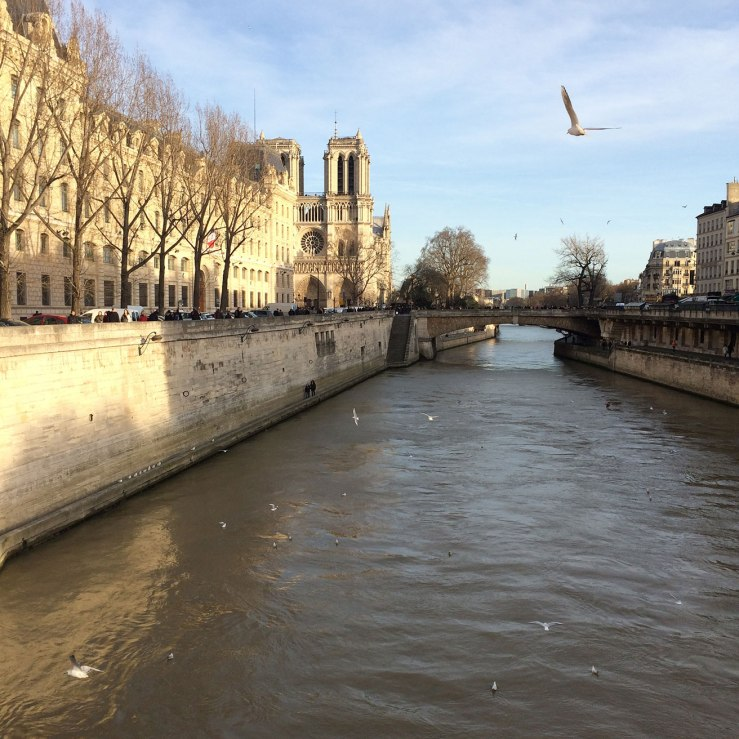 Sunshine on the Seine, Paris