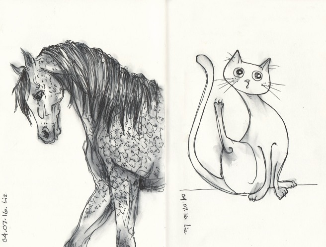 04.07.16_horse+cat