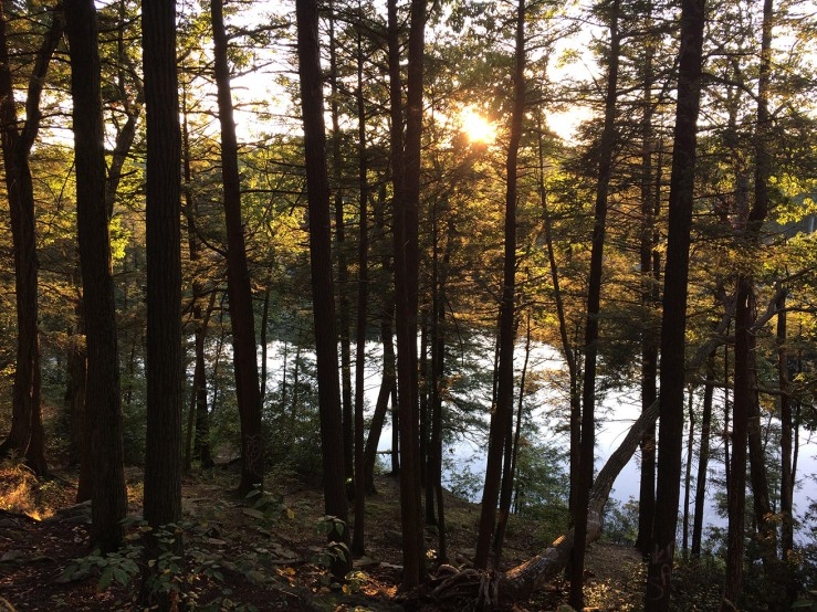Fahnestock State Park camping