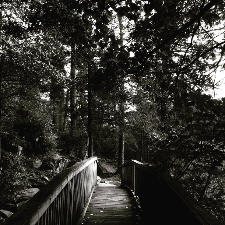 hiking Fahnestock State Park
