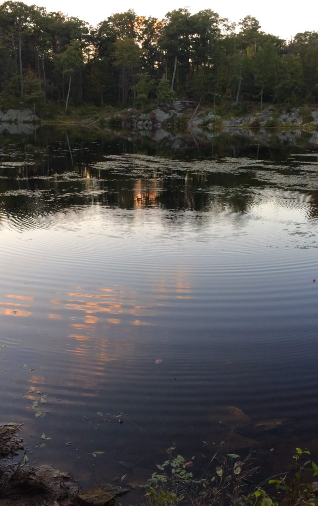 Ripples on the glass pond; stone-skipping in the fading light