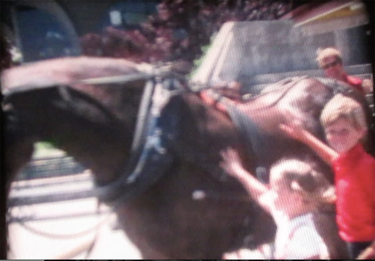 super 8 still of horse and kids