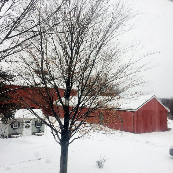 Red barns in snow