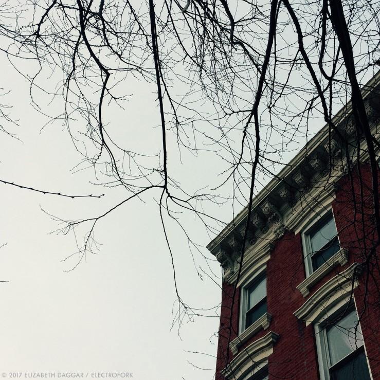 photo of apartment windows