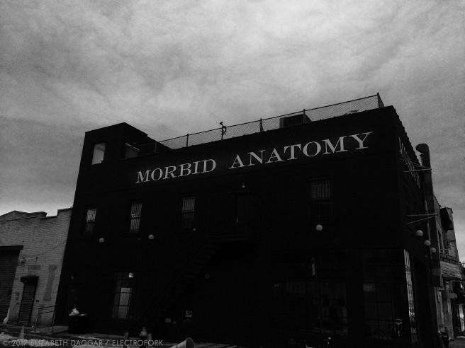 Morbid Anatomy facade