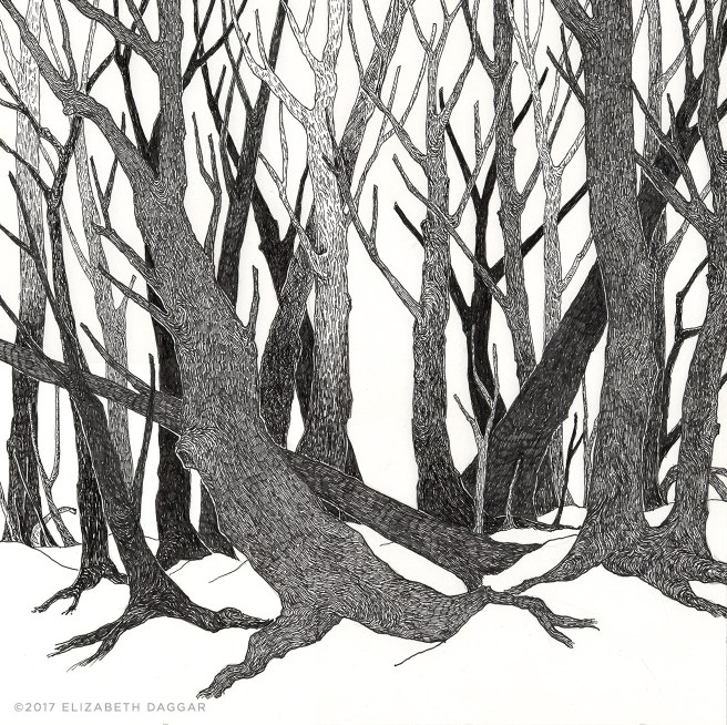 ink drawing of trees