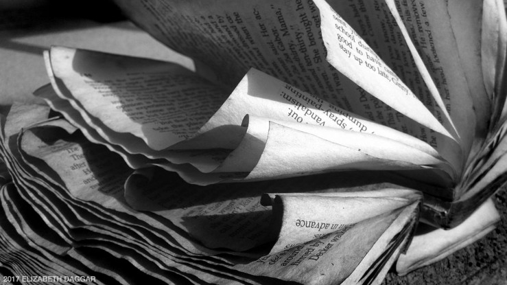 Photo of old book pages