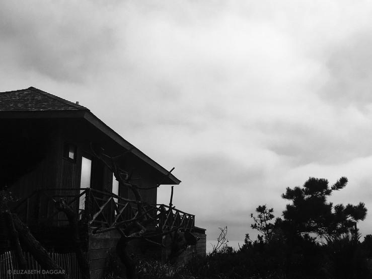 Fire Island Pines house
