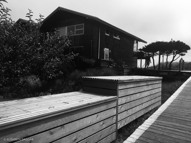 A Fire Island Pines beach house