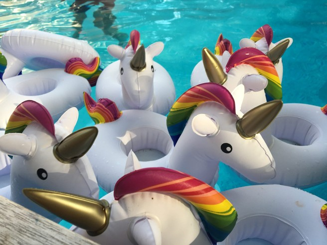 Fire Island Pines pool unicorns