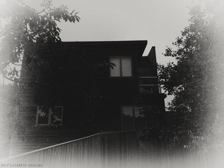 A house in the pines