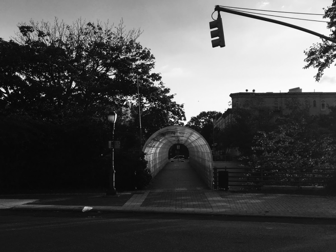 pedestrian bridge in Windsor Terrace