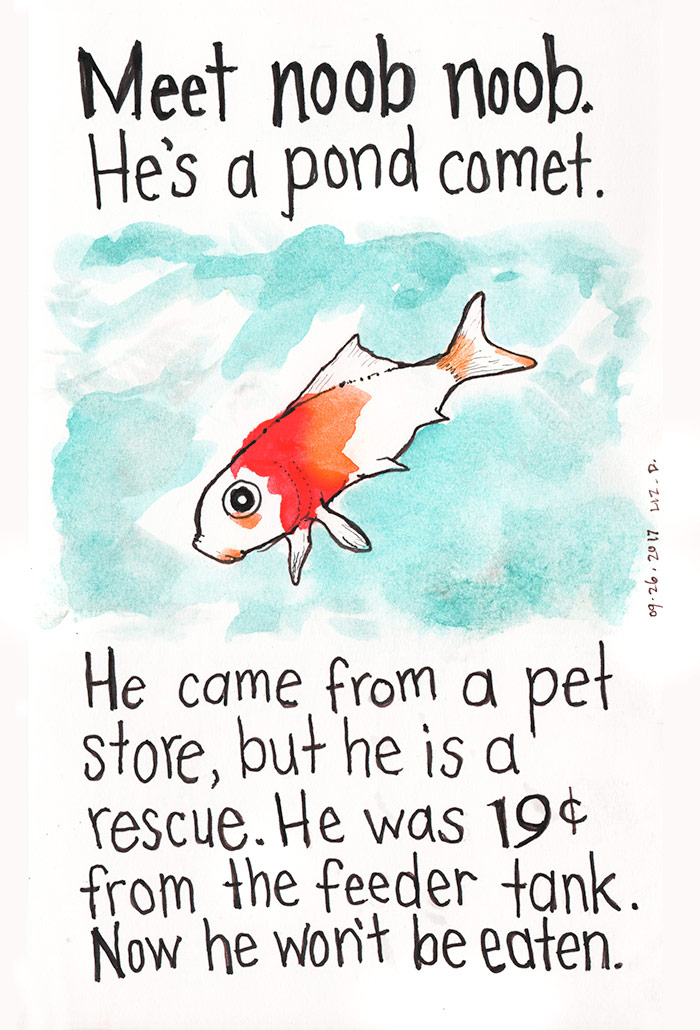 watercolor painting of a goldfish