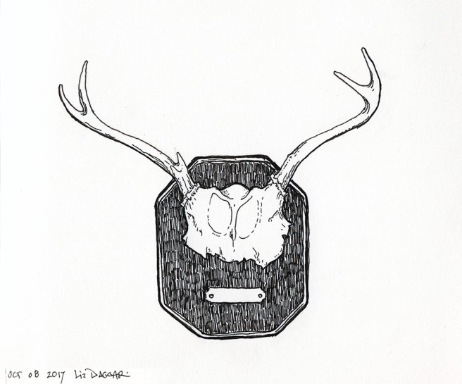 rack of deer antlers (ink drawing)