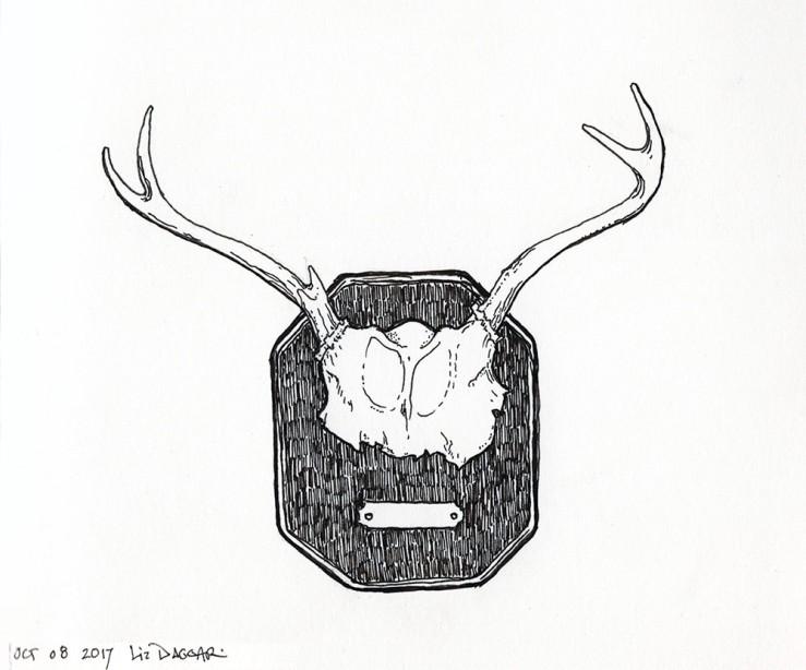 rack of deer antlers (ink drawing)