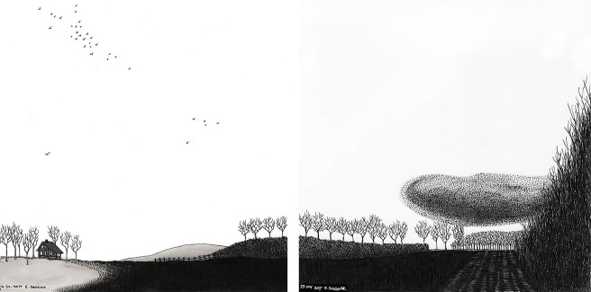 ink drawing of birds flying in formation