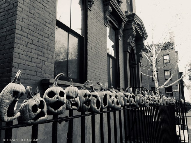 jack o lanterns on an iron fence