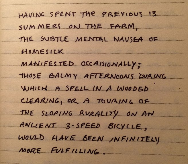 a scrap of writing I did when I was 21, summer after college. (a summer homesickness)