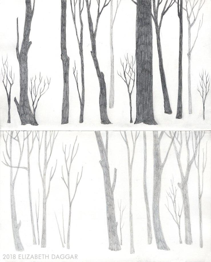 pencil drawings of trees