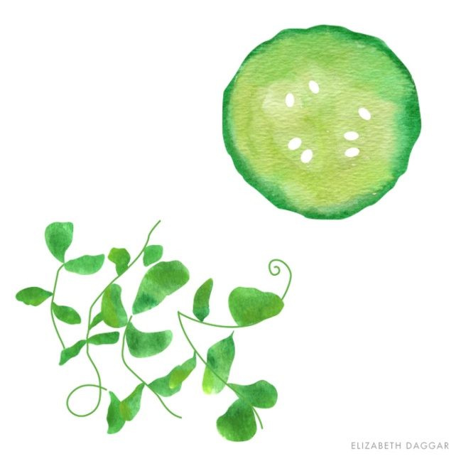 watercolor of a cuke slice and some watercress