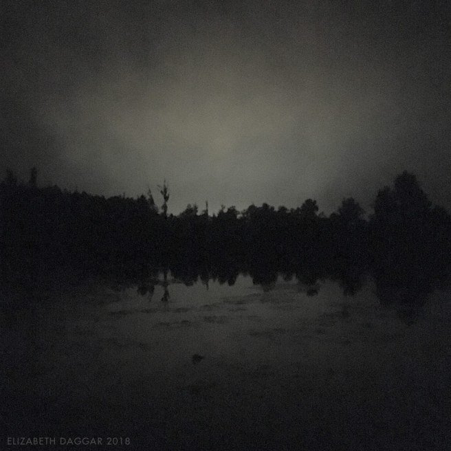 nighttime water lined with trees