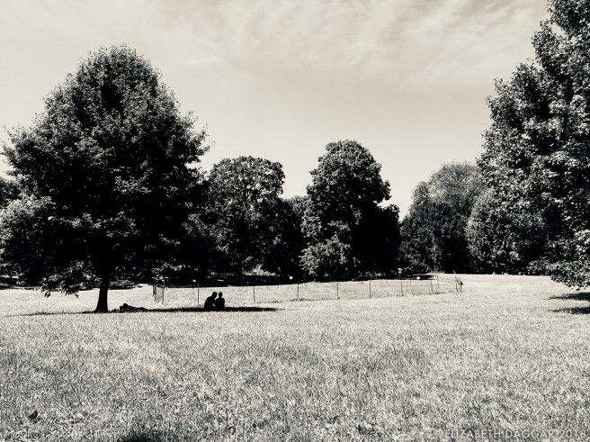 b&w photograph of people in a quiet sunny green park