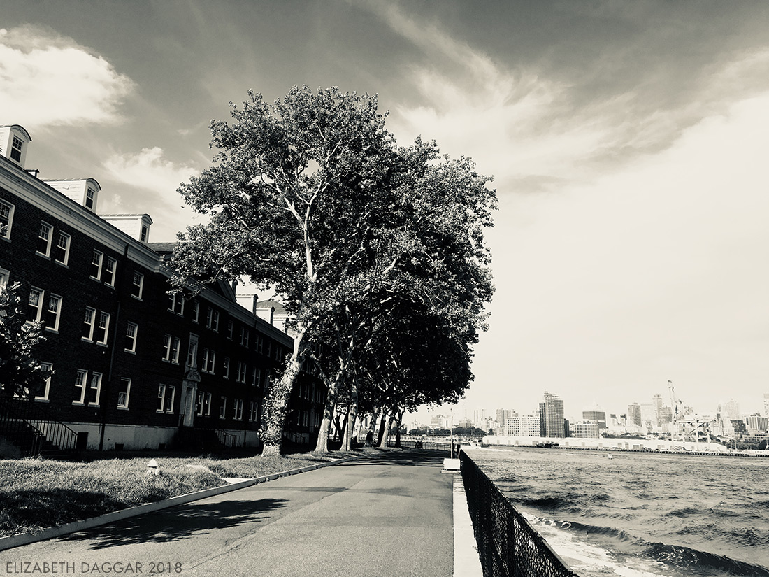View of the city from Governors Island