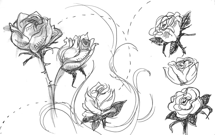 ink sketches of roses