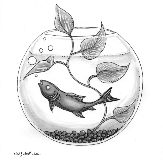 ink drawing of a minnow in a fishbowl