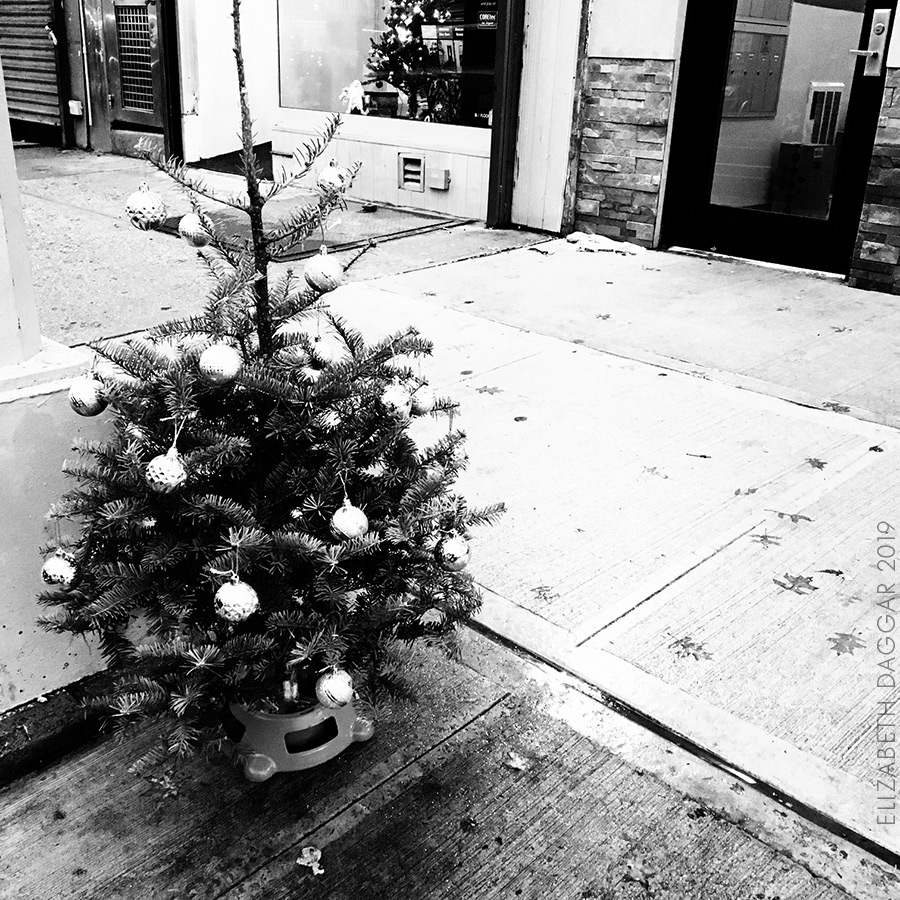 an abandoned sidewalk xmas tree— set out to the street before xmas fully dressed (b&w photo)